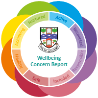 Wellbeing Concern Report